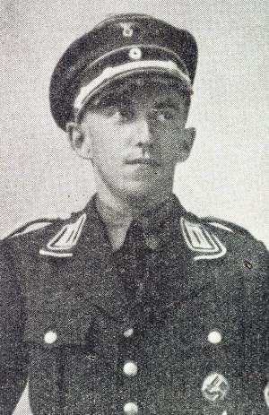 Walter Heyse